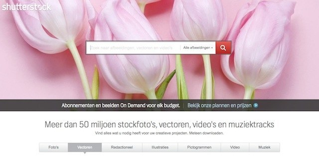 Rechtenvrije Fotos Voor Je Website De Beste Stockfoto Sites